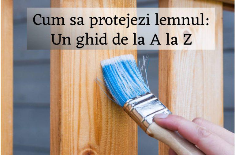 Protectie lemn interior si exterior, de la A la Z
