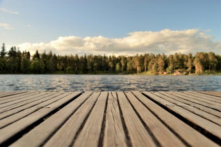 7 Candidati La Cel Mai Bun Lac Pentru Lemn In Exterior